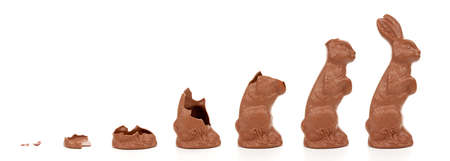 Rising chocolate easter bunny, isolated on white background. Stock Photo