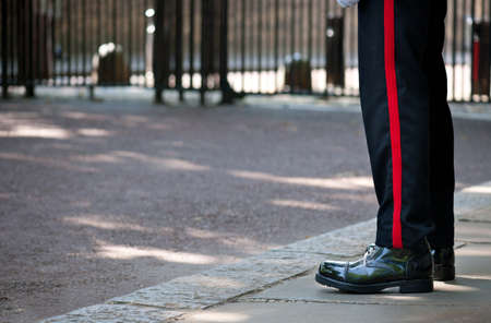 buckingham: Soldier of the British Royal Guard, watching an entry of Buckingham Palace, London
