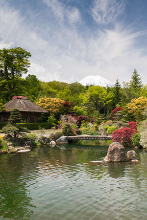 Traditional Japanese garden with pond, bridge, trees, kois and snowcapped mt Fuji in the background