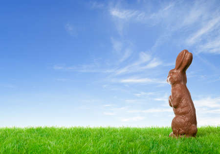 Chocolate easter bunny on a green meadow over a bright spring sky. photo