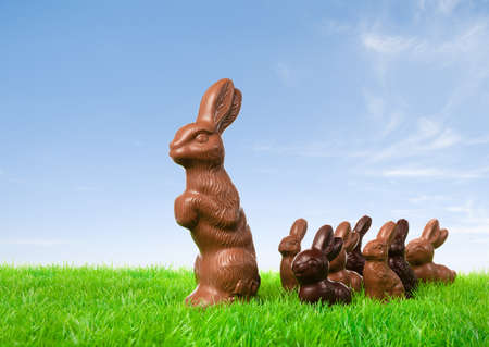 Group of chocolate bunnies on the way over a fresh meadow.  photo