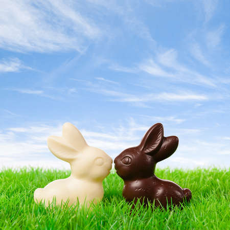 Black and white chocolate bunny kissing on a fresh meadow