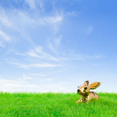 Golden easter bunny, sitting in bright field at a fine spring day  photo