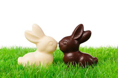 Two chocolate bunnies on a fresh meadow  Isolated on white  photo
