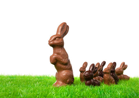 egg hunt: Group of chocolate bunnies on the way over a fresh meadow