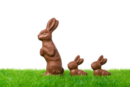 Three nice chocolate easter bunnies on a fresh meadow  Isolated on white  photo