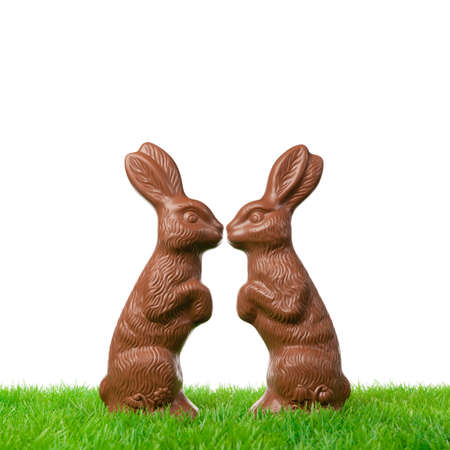 Two chocolate easter bunnies in love  Isolated on white  photo