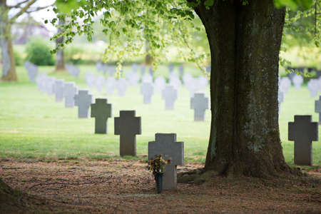 Peaceful moment at a decorated war grave under an old tree at the German military cemtery, Recogne-Bastogne, Belgium. Stock Photo