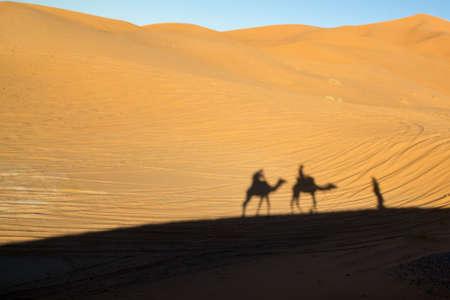 Shadows of the camel ride near dawn