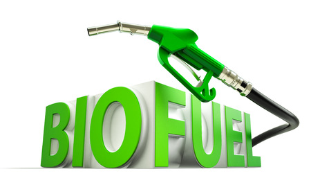 bio fuel: Biocombustible