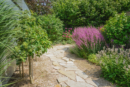 flowering plants: Decorative garden path surrounded by flowering plants. Stock Photo