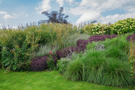 flowering plants: Lawn and a border of flowering plants.