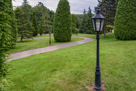 conifers: Winding path through the park with conifers with lanterns. Stock Photo