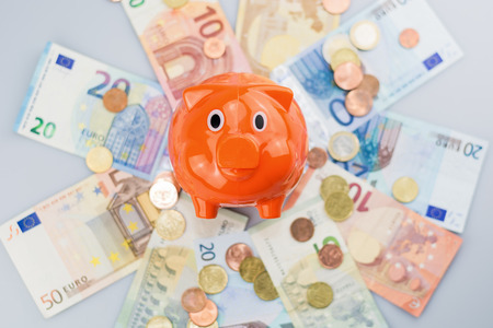 Piggy bank watching a stack of Euro banknotes and coins.