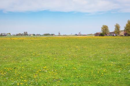 Typisch Nederlands polderlandschap met molens Stockfoto