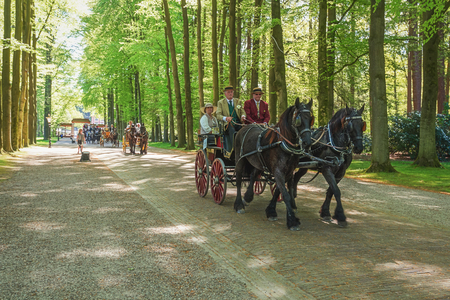 blinder: Apeldoorn, The Netherlands, May 8, 2016: Procession of coaches on the lane to the Palace Het Loo in Apeldoorn