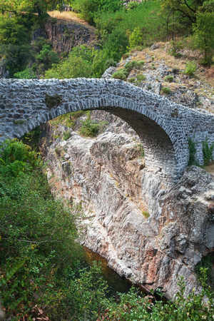 riverside trees: The Pont du Diable or Devil Bridge is a Roman bridge that spans the river Ardeche at about 10 m altitude. The bridge is located near the village of Thueyts in the Ardeche department in France