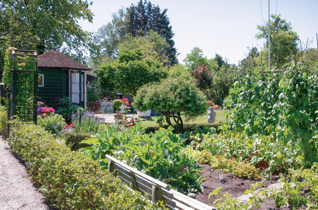 Zaandam, The Netherlands, July 2, 2018: Garden shed surrounded by a beautiful decorative kitchen and flower garden in The Netherlands