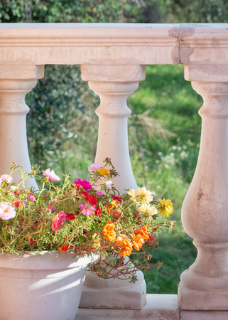 Balustrade made of pillars on the terrace that is decorated with a flower pot Archivio Fotografico - 113434522
