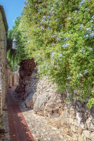 Impression of a narrow street with beautiful blooming blue flowers on one side in the old center of the  picturesque medieval French village of Eze