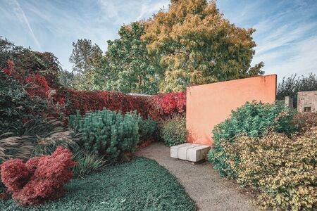 Orange wall as decorative element in an autumn garden in the park somewhere in The Netherlands