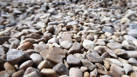 shingle: Beach shingle