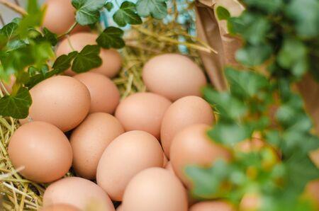 Fresh eggs on food market close-up 版權商用圖片