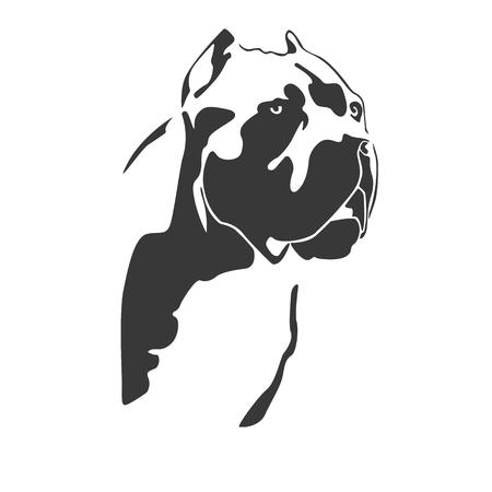 Portrait of dog cane Corso Italiano. The head of the Molossian. Black on a white background. Vector illustration.  イラスト・ベクター素材