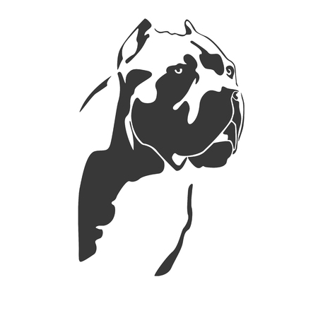 Portrait of dog cane Corso Italiano. The head of the Molossian. Black on a white background. Vector illustration. Vettoriali