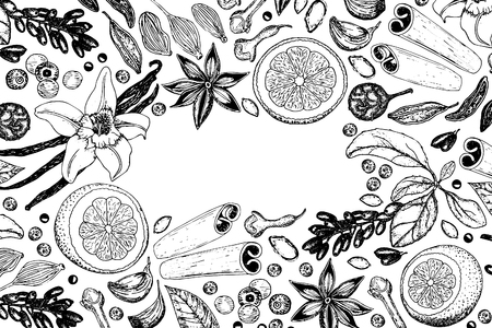 Hand drawn spice background. Black and white drawing.