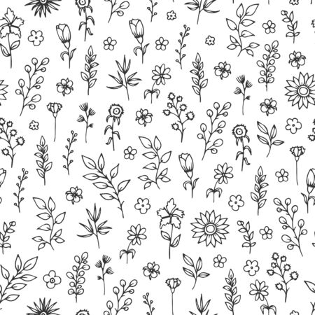 Vector seamless pattern with hand drawn herbs and flowers on white background.