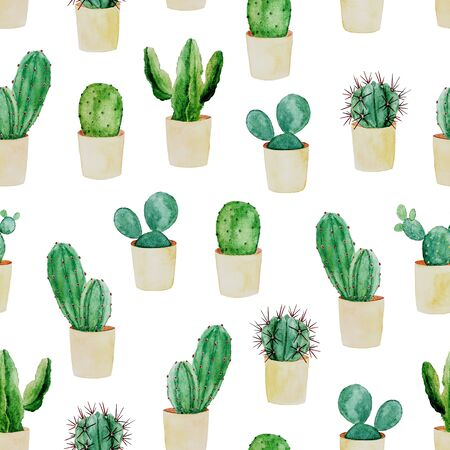 Watercolor seamless background with cactus in pots on white. Nature botanical illustration.