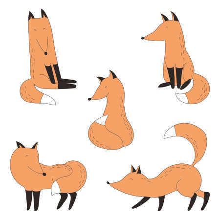 Drawn funny red fox collection. Cute cartoon wild foxes.