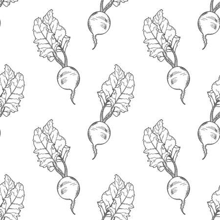 Hand-drawn beetroot seamless pattern. Black and white vector illustration. 向量圖像