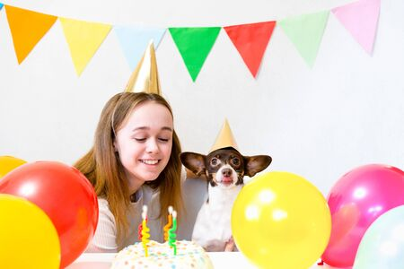 Cute small funny dog with a birthday cake and a party hat celebrating birthday with girl mistress. Beautiful young woman and a dog in holiday caps. Dog birthday party. Friendship concept.. Banque d'images - 138555344