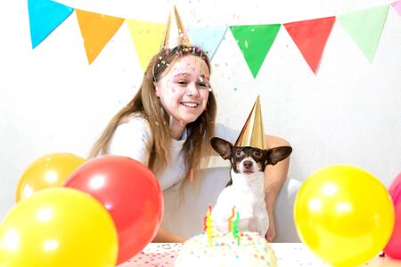 Cute small funny dog with a birthday cake and a party hat celebrating birthday with girl mistress. Beautiful young woman and a dog in holiday caps. Dog birthday party. Friendship concept.. Banque d'images - 138555219