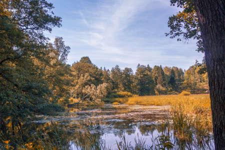 Monrepos park in autumn season. Forest and lake. Vyborg, Russia.