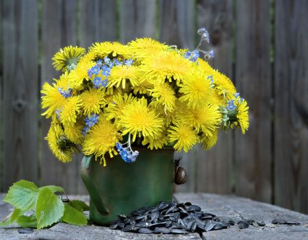 Bouquet from dandelions and sunflower seeds. photo