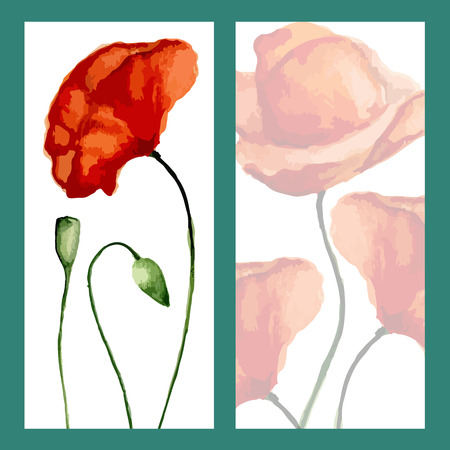 opium: Greeting card poppies. Watercolor. Vector illustration Illustration