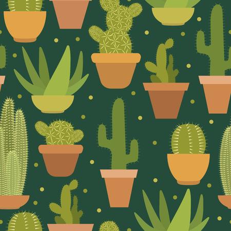 cactus botany: Cactus pattern