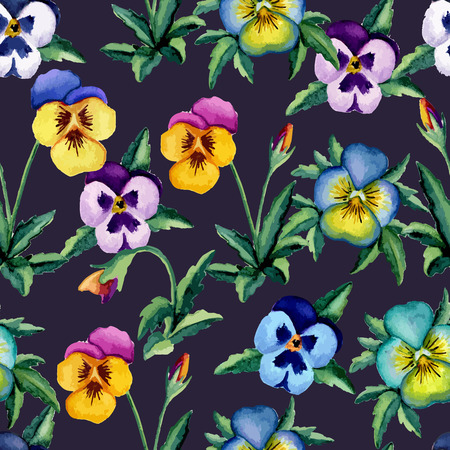 ilustration and painting: Pansy violet pattern. Watercolor. Vector illustration Illustration