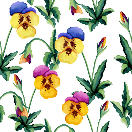 Pansy white pattern. Watercolor. Vector illustration