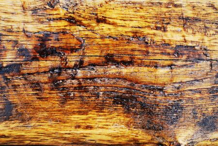 Texture of old varnished wood