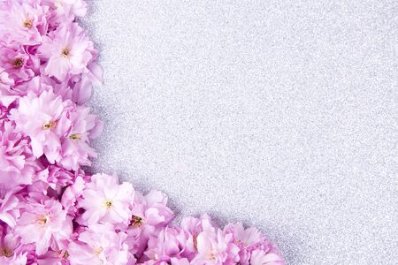 Spring nature background with lovely sakura flowers on pink pastel background, top view, banner. Springtime concept