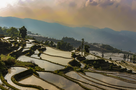 Top view of Yuanyang rice terraces in the evening