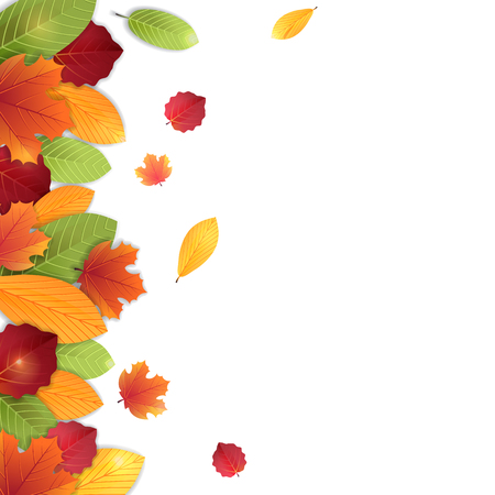 Autumn leaves, vector background in bright colors