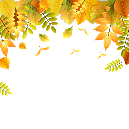 Falling autumn leaves pattern in bright colors