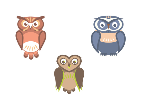 Vectorset of owl birds flat illustration Ilustração