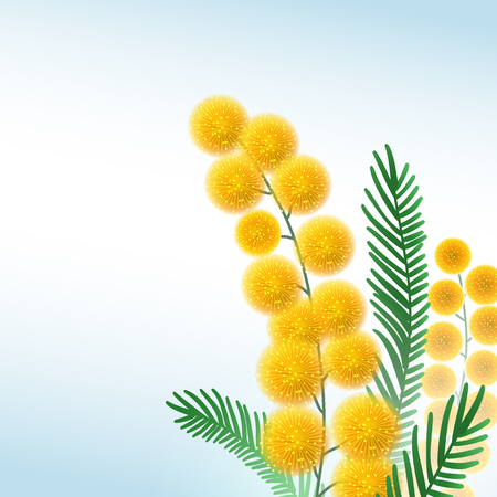 Acacia Flower abstract Background EPS10 矢量图像