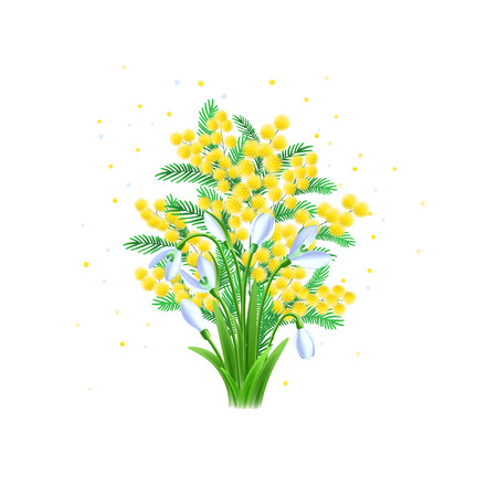 Beauty spring mimosa flowers and snowdrop